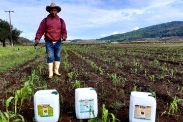 Atendidas más de 38 mil hectáreas con el programa Agricultura Sustentable
